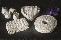 La Ginestarie fromages de brebis bio